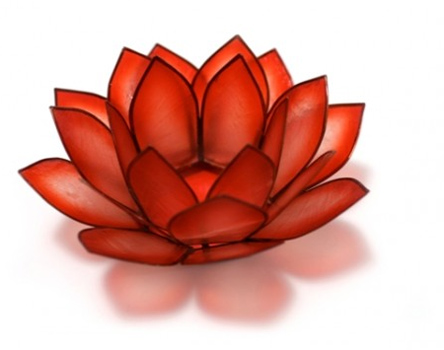 Root Chakra Lotus