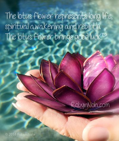Chakra lotus tree inspirational chakra gifts robyn nola gifts chakra lotus mightylinksfo